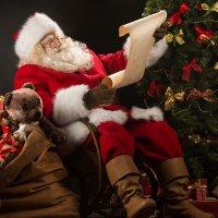 Калькулятор для Деда Мороза: как за год изменились цены на подарки в Тверском регионе